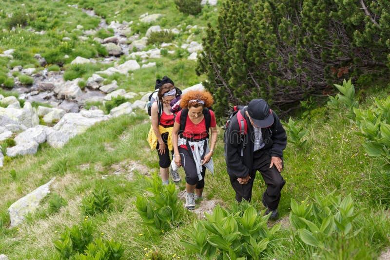 Семья hikers стоковое фото rf