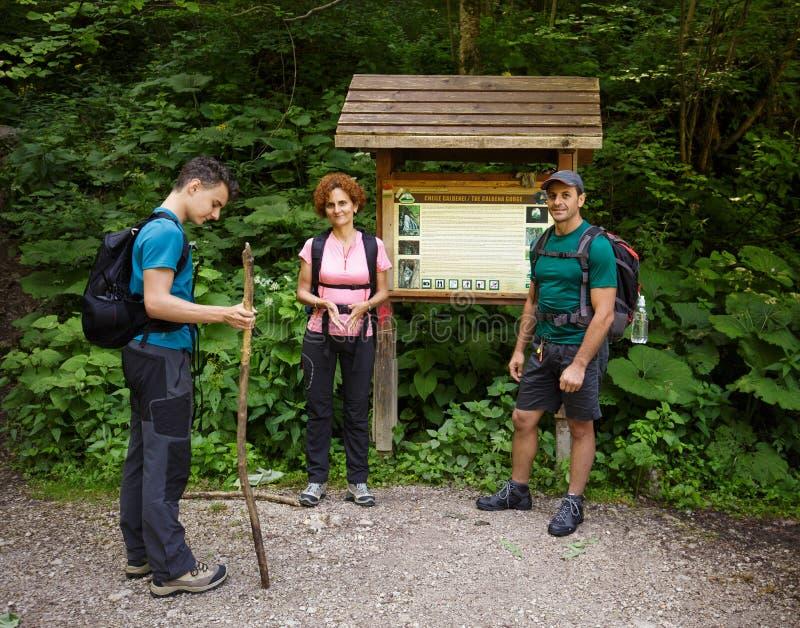 Семья hikers стоковые фотографии rf