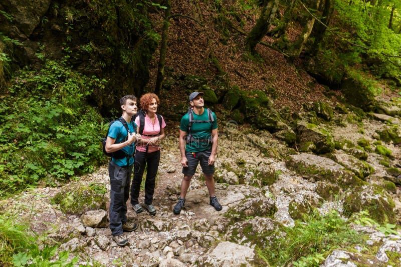 Семья hikers стоковые фото