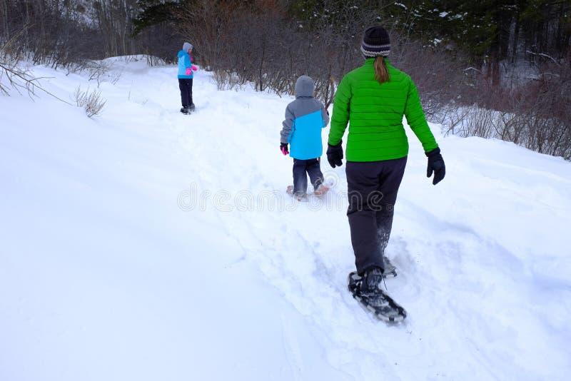 Семья Snowshoeing в снеге зимы стоковое фото rf