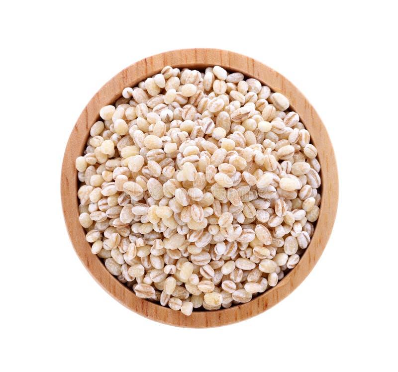 Семя зерна ячменя стоковые фотографии rf