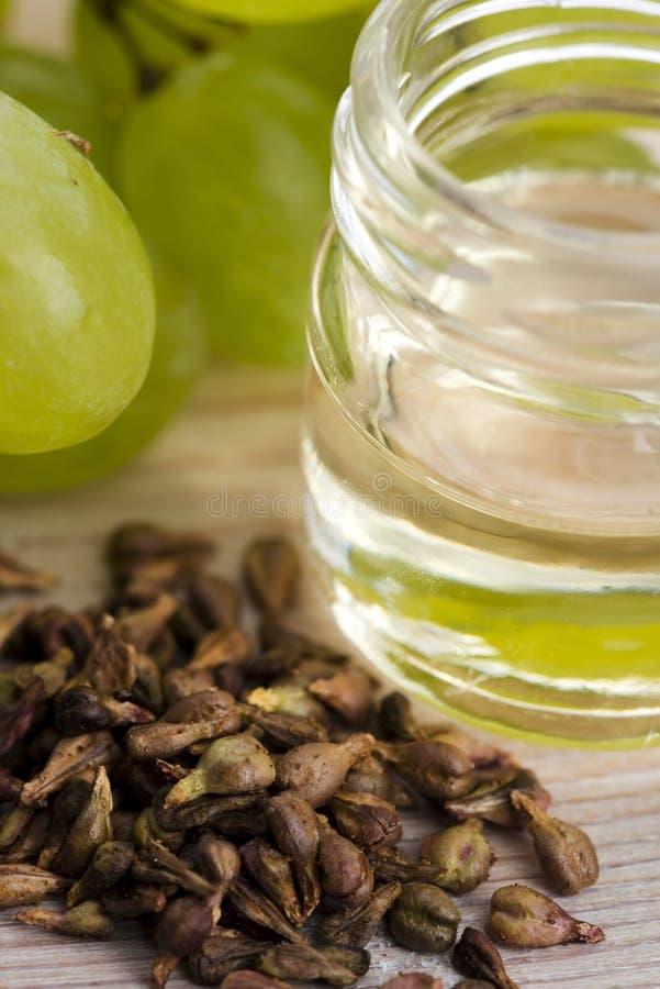 семя масла виноградины стоковое фото