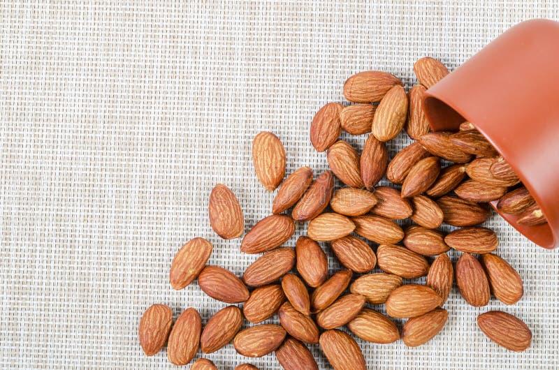 Семя миндалины с коричневым шаром стоковые изображения