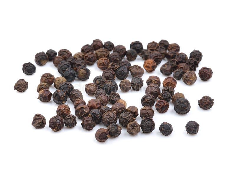 Семя черного перца на белой предпосылке стоковые изображения rf