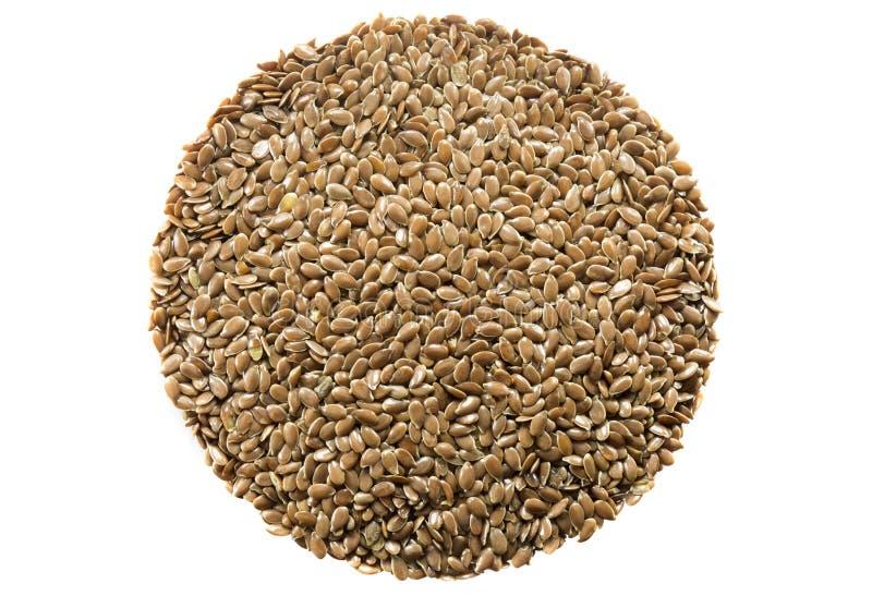 Семя льна стоковые изображения