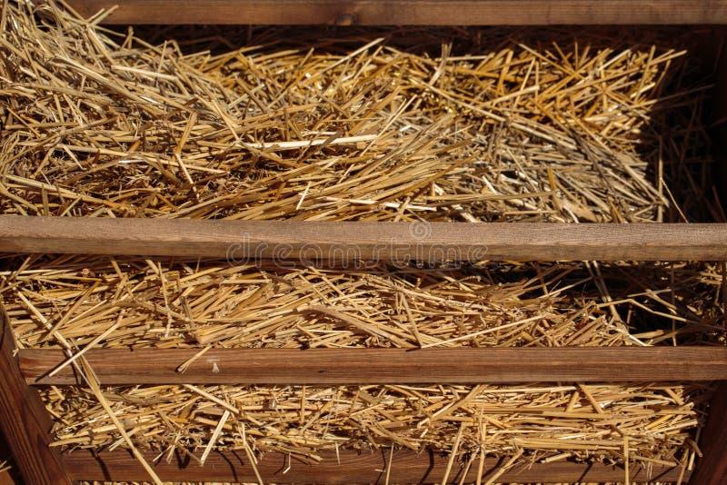Сено для деревянного обнесет забором лето стоковое фото rf