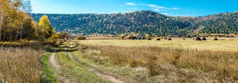 Сено осени в поле стоковое фото rf