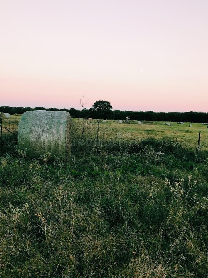 сено с заходом солнца стоковая фотография