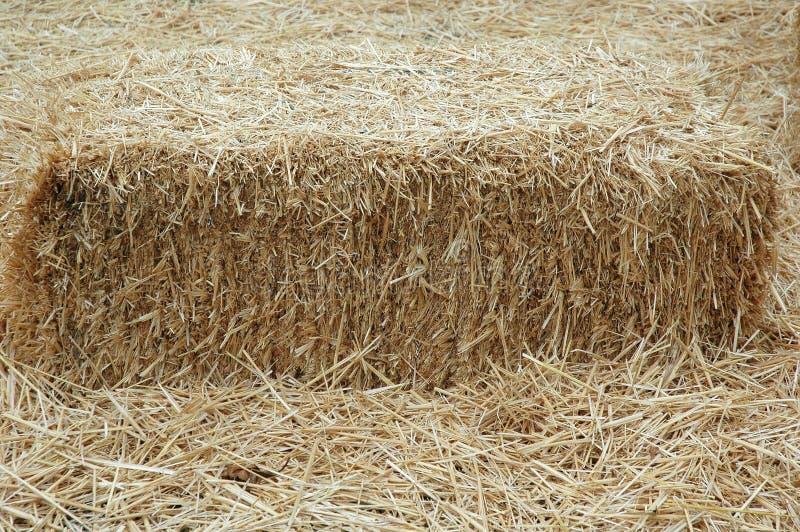 сено фермы амбара стоковая фотография