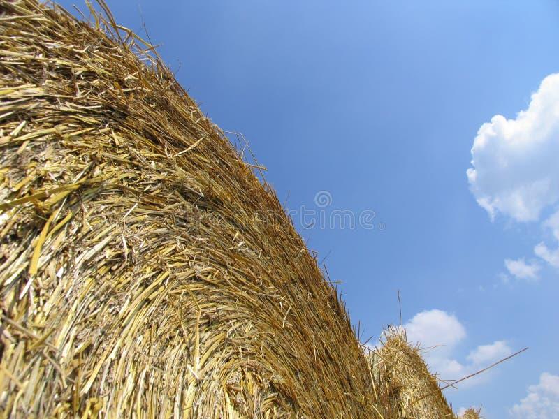 сено 2 Bales Стоковое фото RF