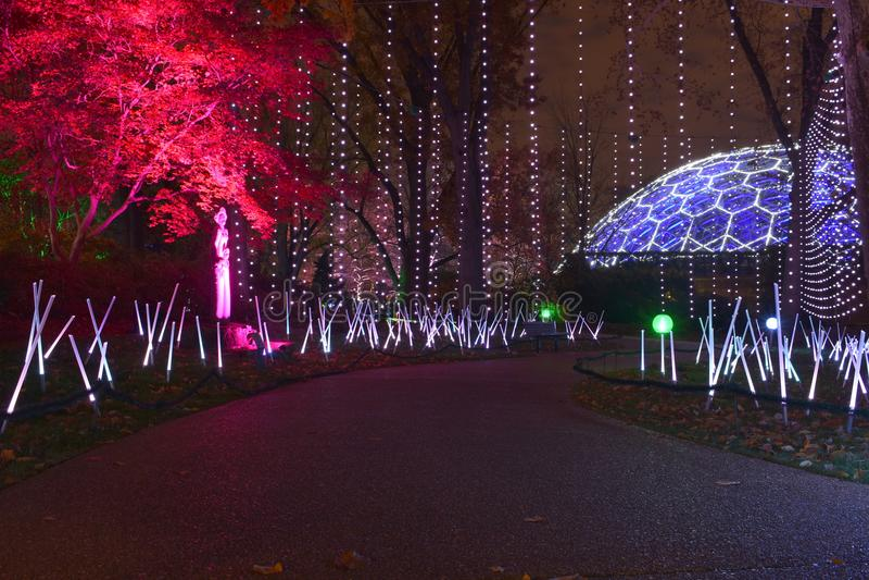 Сент-Луис, Миссури, США - зарево Миссури ботаническое стоковое изображение