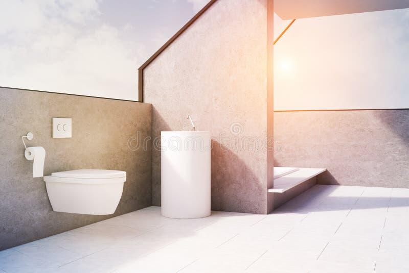 Серая ванная комната с туалетом, тонизированной стороной, иллюстрация вектора