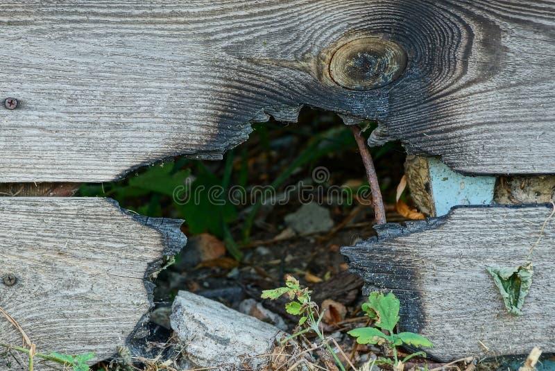 Серая деревянная загородка всходит на борт с сгоренной черной дырой стоковые фотографии rf
