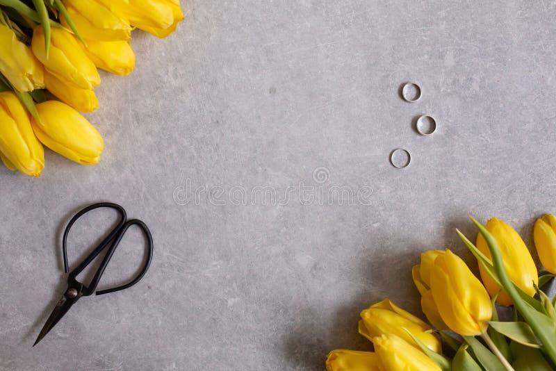 Серая предпосылка с желтым взглядом сверху тюльпанов и ножниц цветков стоковая фотография