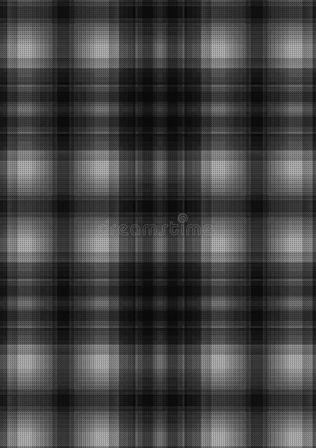Серая шотландка стоковые изображения rf