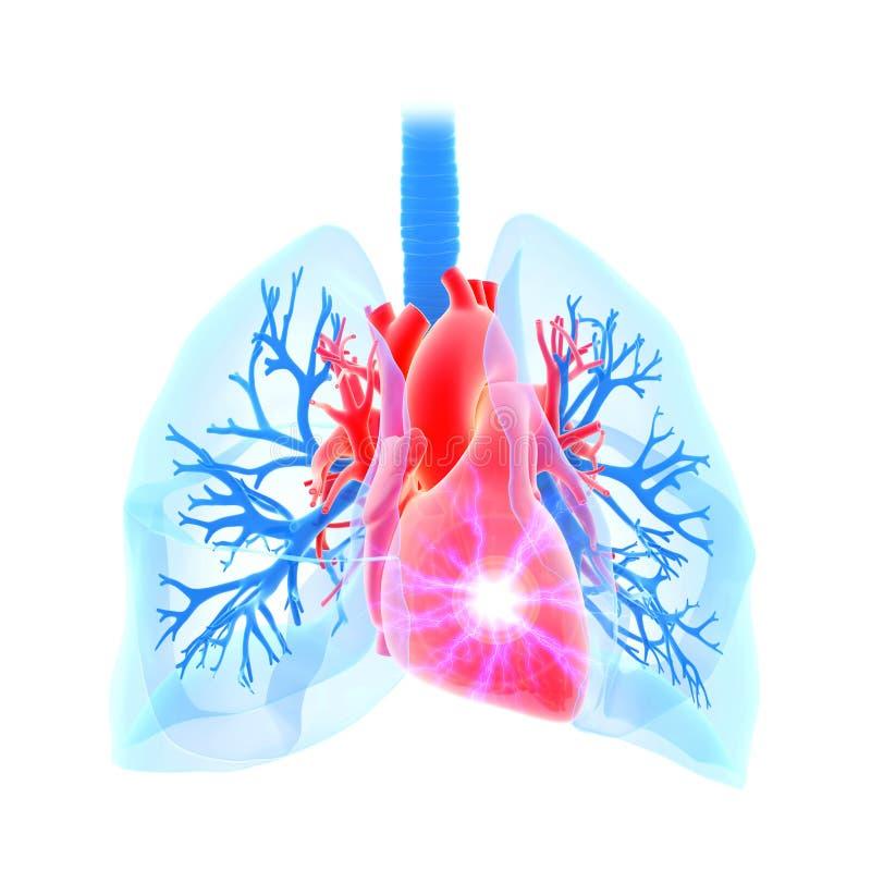 Сердечный приступ иллюстрация вектора