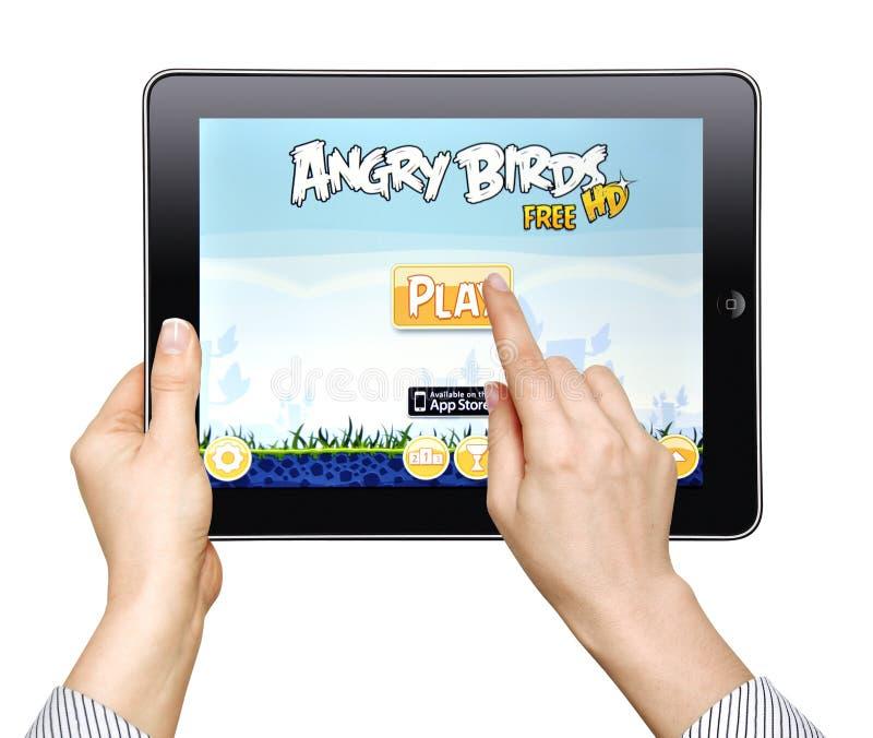 сердитая женщина игры игры птиц стоковое изображение