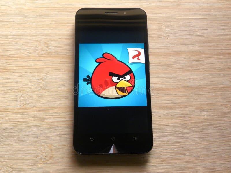 Сердитая игра птиц стоковые фотографии rf