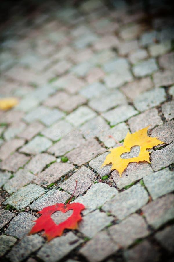 Сердца листьев осени стоковые фотографии rf