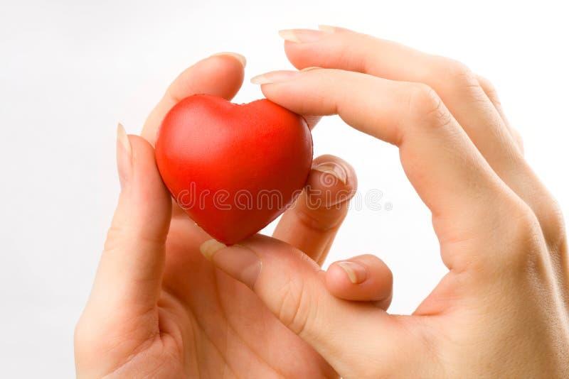 Сердце в женских руках стоковые изображения