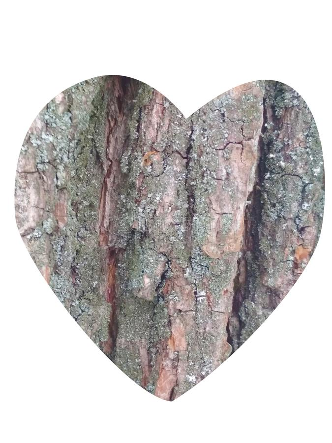 Сердце Деревянная текстура стоковое фото rf