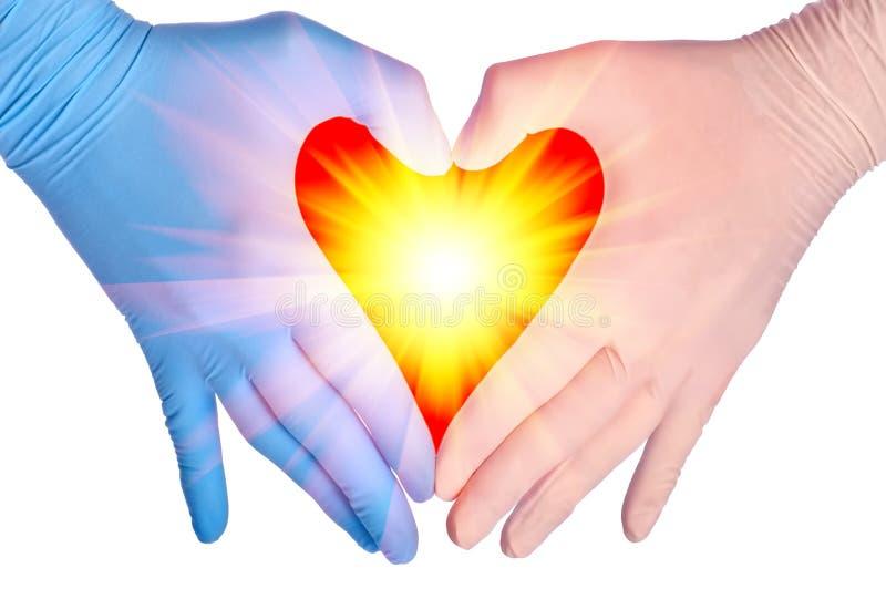 сердце доктора стоковая фотография