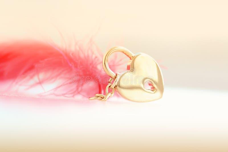 Сердце и перо стоковые фото
