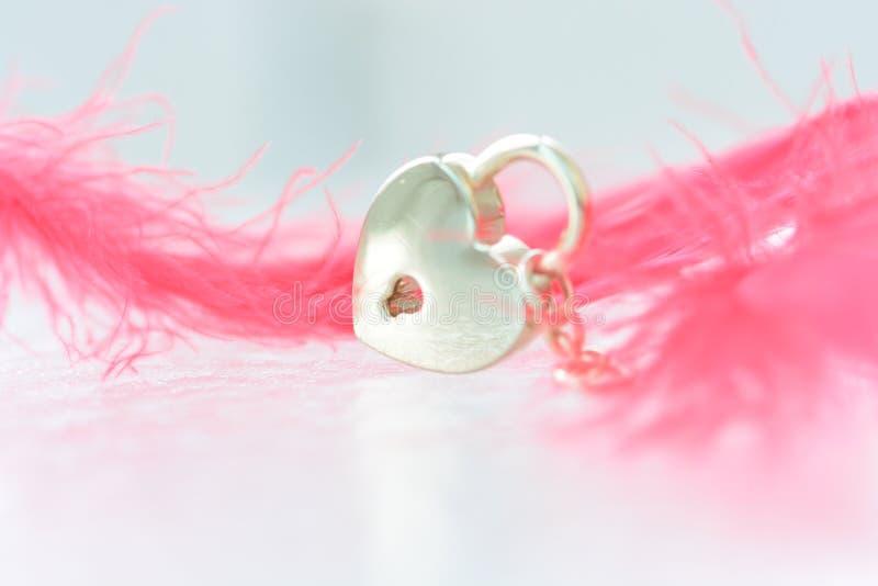 Сердце и розовое перо стоковые фото