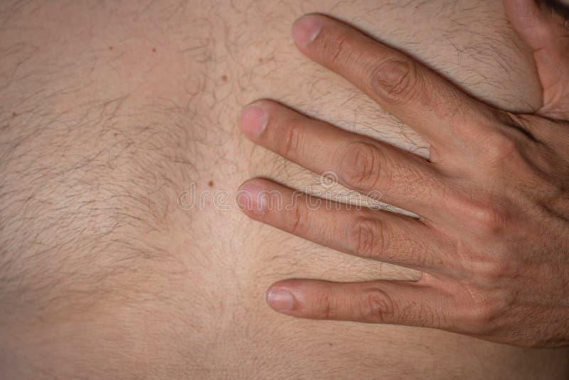 Сердце кавказской руки человека левой хватая стоковые изображения rf