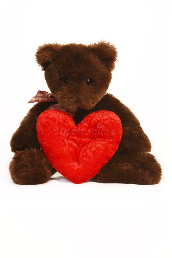 сердце медведя держа красные valentines игрушечного стоковые изображения rf