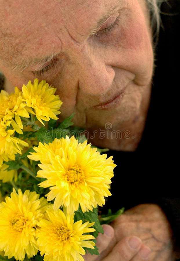 сердце сломленной бабушки большое стоковое изображение