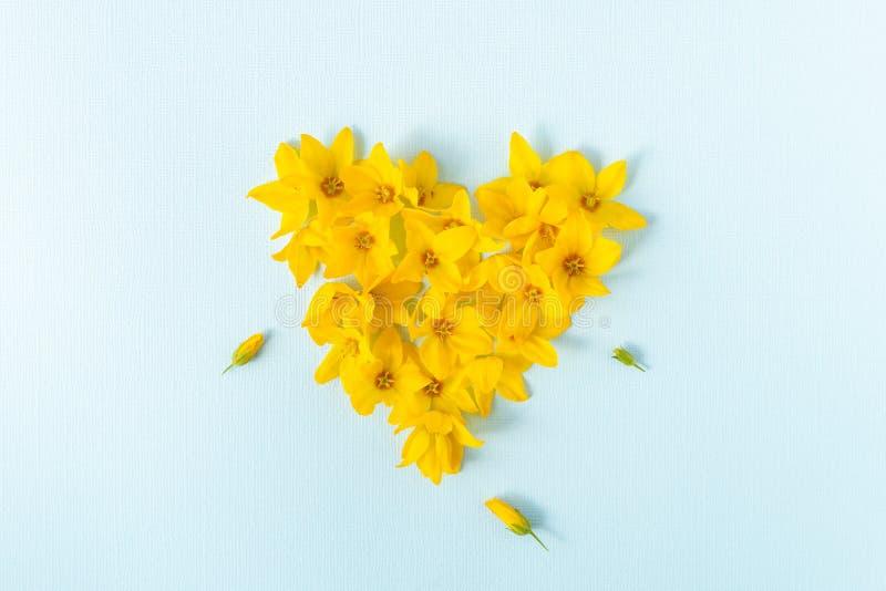 Сердце сформированное с желтыми головами цветка на светлом - голубая предпосылка стоковая фотография
