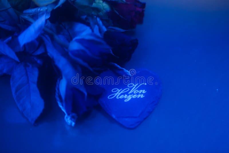 Сердце с розами на голубой предпосылке стоковая фотография rf