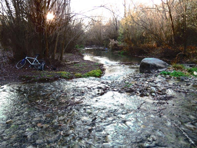 Серебряное река стоковые изображения