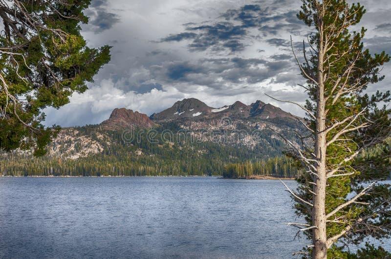 Серебряный вид на озеро стоковые фото