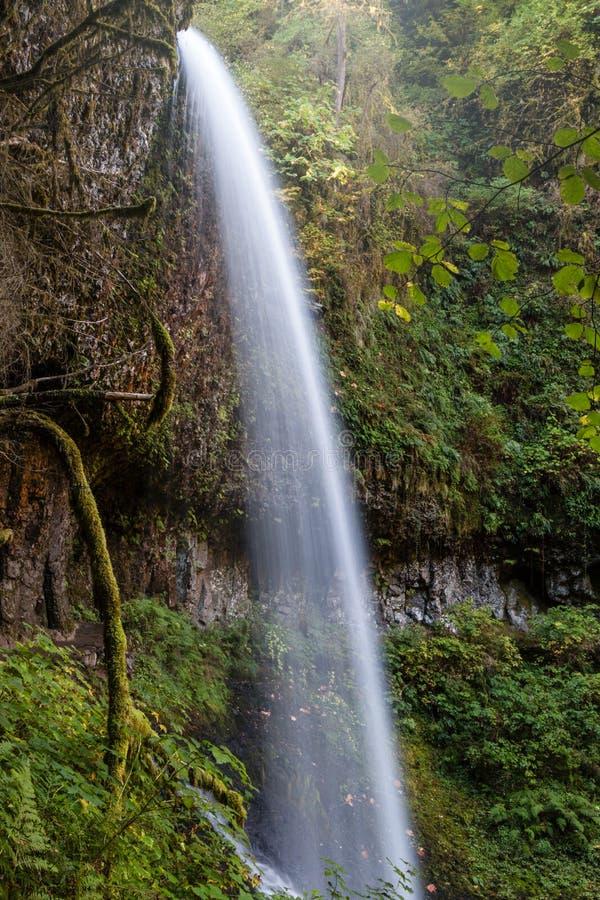 Серебр падает парк штата в осени стоковое изображение
