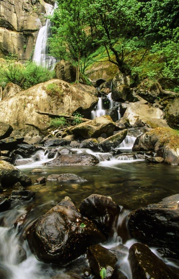 Серебр падает водопад парка штата стоковая фотография rf