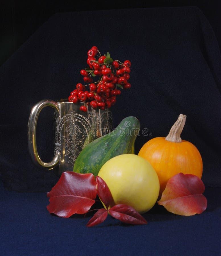 серебр чашки ягод стоковые изображения rf