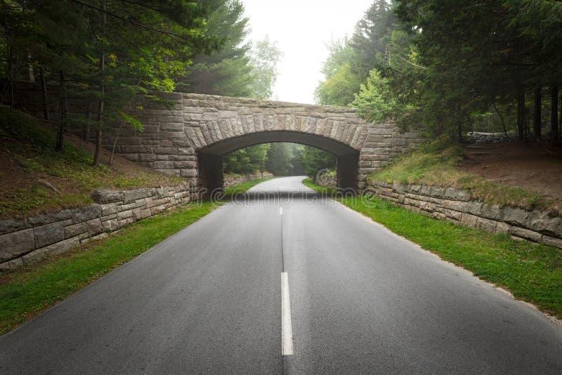 Середина моста дороги исторического каменного в национальном парке Acadia стоковое фото rf