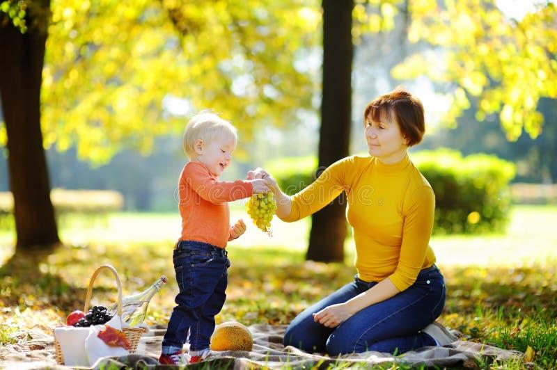 Середина постарела женщина и ее маленький внук имея пикник стоковая фотография