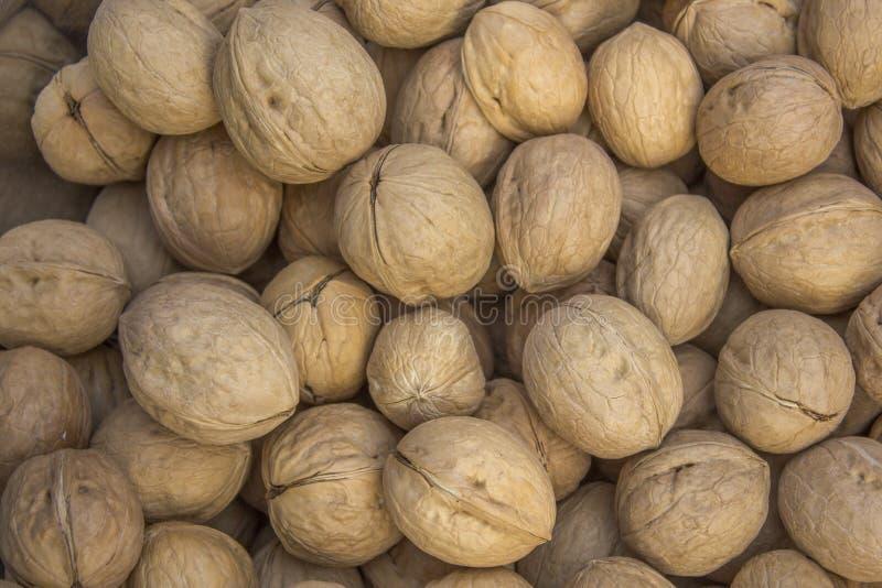 Серии свежих золотых коричневых грецких орехов лежат в куче естественная текстура стоковое изображение rf