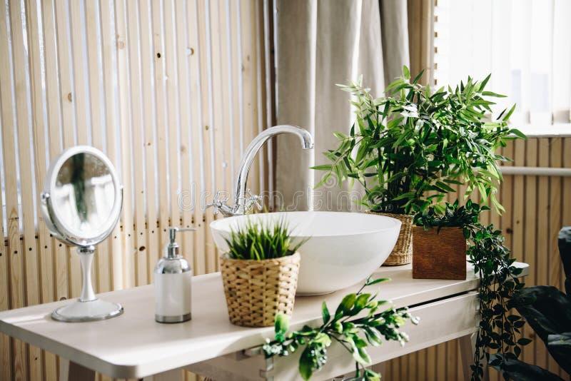 Серии современных в горшке вечнозеленых искусственных заводов используемых во внутреннем художественном оформлении в bathroom стоковые изображения