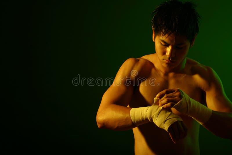 серия боксера стоковая фотография rf