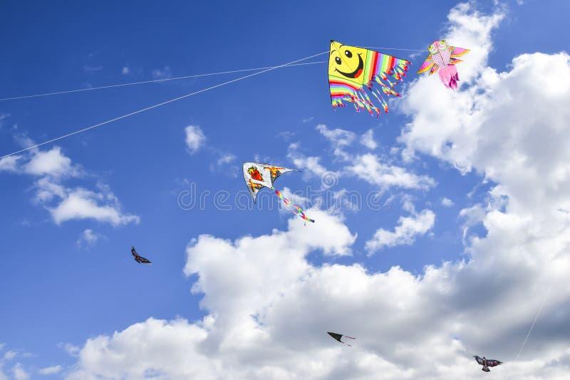 Серия пестротканых змеев в предпосылке неба вертикальной стоковые изображения