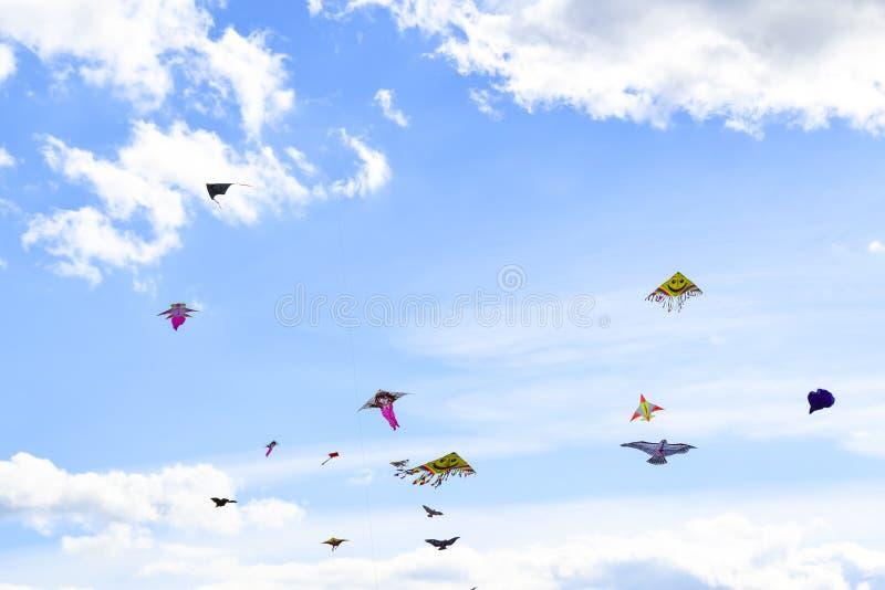 Серия пестротканых змеев в предпосылке неба вертикальной стоковые фото