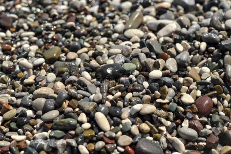 Серия природы: текстура влажных pebblees моря стоковое изображение rf