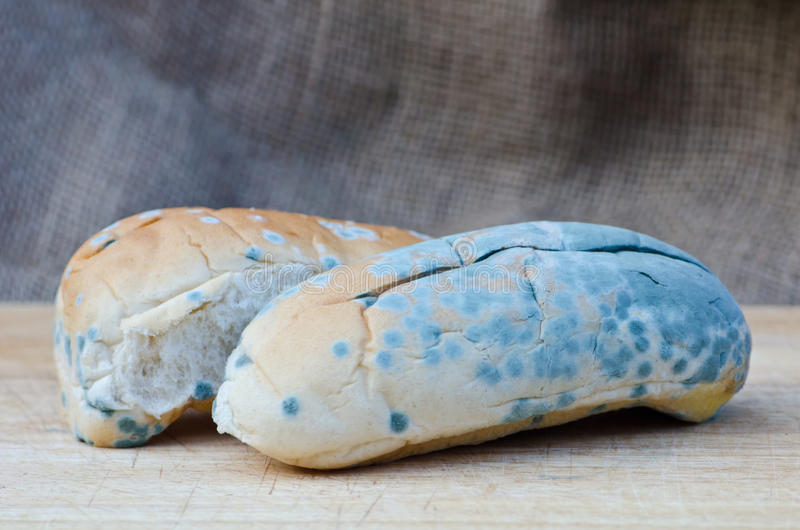 Серия старой несъедобной еды стоковое фото