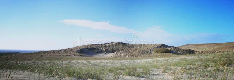 Серое время дюн осенью стоковая фотография