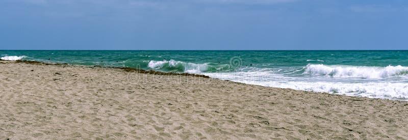 Серферы ждать езду в прибое Флориды стоковые фото