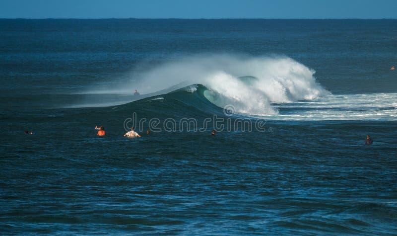Серферы ждут волну в океане стоковое фото